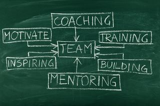 Team-Building-and-Coaching Flow